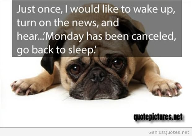 Funny-monday-canceled-quote-pic